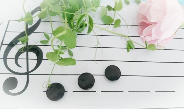 音符と植物の写真