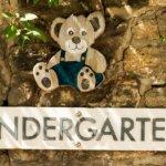 幼稚園、保育園、木とクマのぬいぐるみ