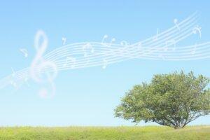 楽譜と青空と木の写真